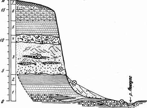 разрез-саратова