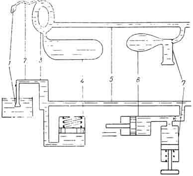 Рис. 26. Принципиальная гидравлическая схема амбулакральной системы дальневосточного трепанга. 1 — мадрепоровая пластинка; 2 — каменистый капал; 3 — кольцевой канал; 4 — полиев пузырь; 5 — радиальный капал; 6 — ампула амбулакральной ножки; 7 — ножка