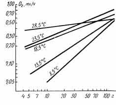 Рис. 29. Зависимость интенсивности потребления кислорода дальневосточным трепангом с различной массой кожно-мышечного мешка от температуры. Шкалы по осям логарифмические